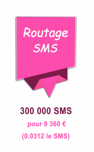 Routage mailing SMS 9360€