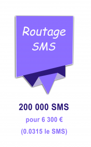 Routage mailing SMS 6300€